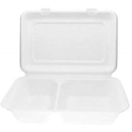 Burger-Box 2-geteilt Zuckerrohr 320x240x50mm (50 Stück)
