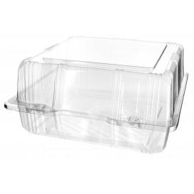 Klappbox PET für Gebäck 20x20x10cm (20 Stück)