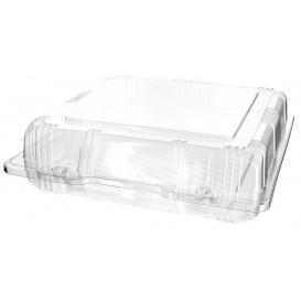 Klappbox PET für Gebäck 20x20x6cm (20 Stück)