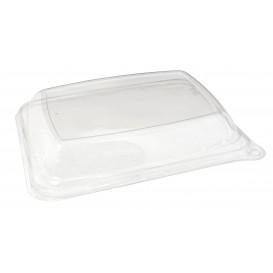 PlastikDeckel für Verpackung Zuckerrohr 20x14cm (50 Stück)