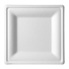 Quadratischer Teller Zuckerrohr Weiß 15x15cm (50 Stück)