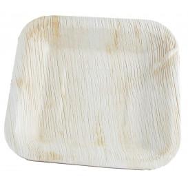 Palmblatt Teller Quadratisch 20x20cm (25 Stück)