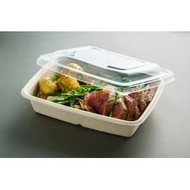 Deckel aus Plastik für Behälter 240x170mm (150 Stück)