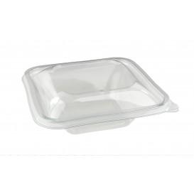 Plastikschale PET Impression 500ml 170x170x30mm (50 Stück)