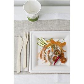 Quadratischer Teller Zuckerrohr Weiß 15x15cm (500 Stück)