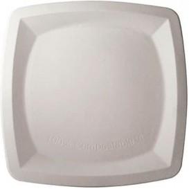 Quadratischer Teller Zuckerrohr 25cm (500 Stück)