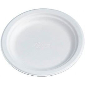 Chinet Teller 240mm (100 Stück)