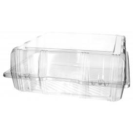 Klappbox PET für Gebäck 25x25x10cm (220 Stück)