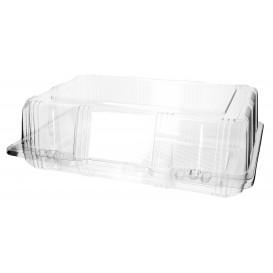 Klappbox PET für Gebäck 25x17x8cm (20 Stück)