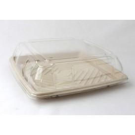 Tablett Zuckerrohr Quadratisch Natürlich 31x31cm (5 Stück)