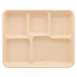 Tablett Zuckerrohr 5-Geteilt 265x215x20mm (500 Stück)