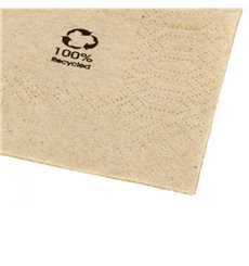 "Bio Papierservietten ""Recycled"" 2L 20x20cm (6000 Stück)"