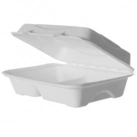 Burger-Box 2-geteilt Zuckerrohr 23x15x7,5cm (50 Stück)