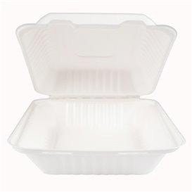 Klappschachtel Zuckerrohr mit PLA Weiß 20x20x7,5cm (50 Stück)
