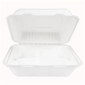 Klappschachtel Zuckerrohr mit PLA Weiß 3F 23x23x7,5cm (200 Stück)
