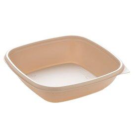Plastikbehälter PP Creme 500ml 16,5x16,5x4cm (50 Stück)